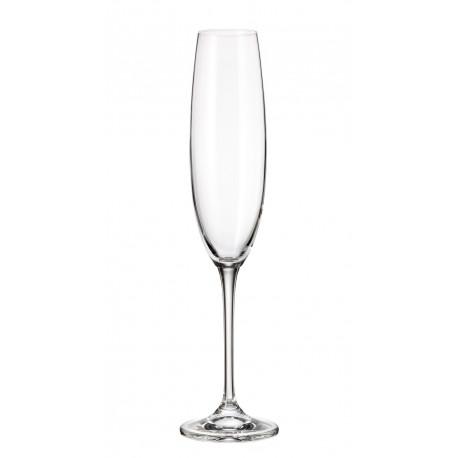 Бокалы для шампанского 250мл 6шт Bohemia Fulica 1SF86 00000 250