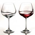 Набор бокалов для вина 570 мл Bohemia Viola Rainbow (круг)